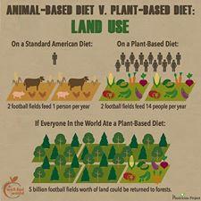 land use vegan