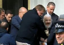 julian assange after